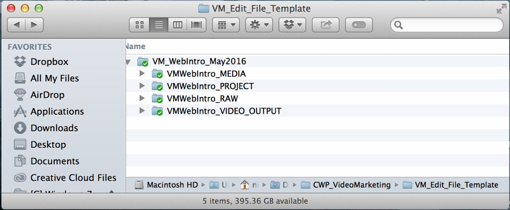 "Sample Edit Folder Setup for a Project Called: ""Video Marketing Introduction""."